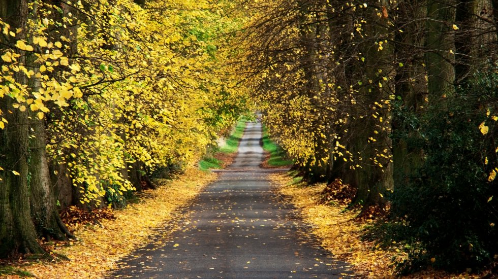 A Must-Do Scenic Route Through The Oxfordshire Countryside